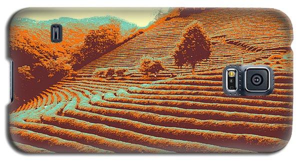 Tea Field Galaxy S5 Case