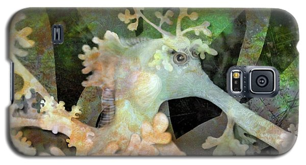 Teal Leafy Sea Dragon Galaxy S5 Case