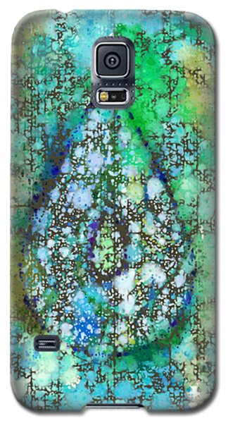 Tears Of Growth Galaxy S5 Case by Auset Anumari