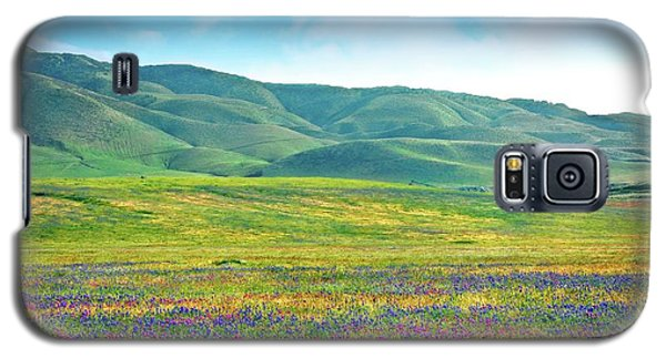 Tejon Ranch Wildflowers Galaxy S5 Case
