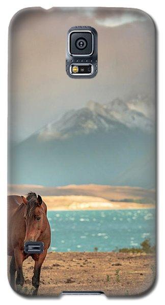 Tekapo Horse Galaxy S5 Case