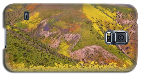 Galaxy S5 Case featuring the photograph Temblor Range Color by Marc Crumpler