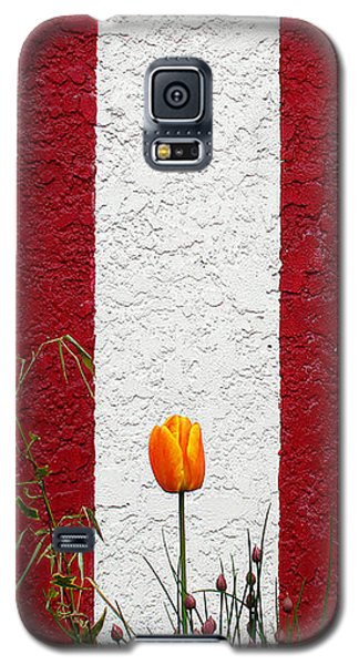 Galaxy S5 Case featuring the photograph Temple Wall by Ethna Gillespie