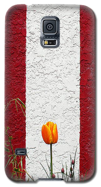 Temple Wall Galaxy S5 Case
