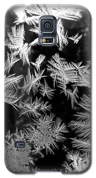 Temporal Treasures Galaxy S5 Case