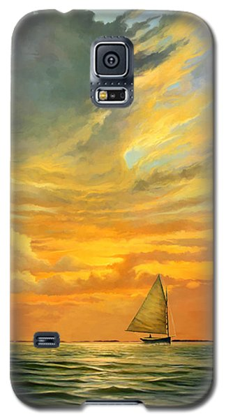 Galaxy S5 Case featuring the painting Ten Thousand Islands by David  Van Hulst