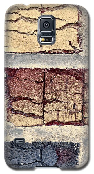Tender Bricks Galaxy S5 Case