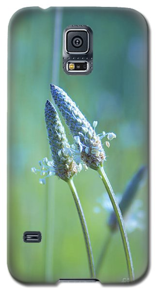 Tender Lovers Galaxy S5 Case