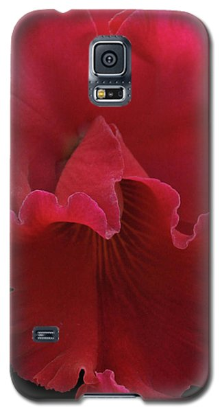Tender Orchid Galaxy S5 Case