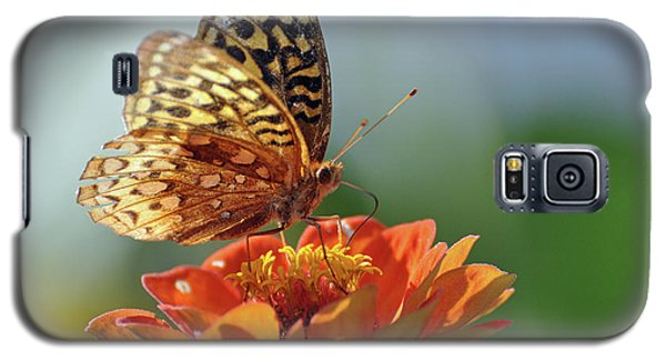 Galaxy S5 Case featuring the photograph Tenderness by Glenn Gordon