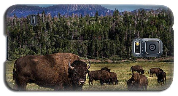 Tending The Herd Galaxy S5 Case