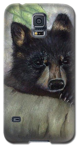 Tennessee Wildlife Black Bear Galaxy S5 Case by Annamarie Sidella-Felts