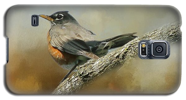 Teressia's Spring Robin  Galaxy S5 Case by TnBackroadsPhotos