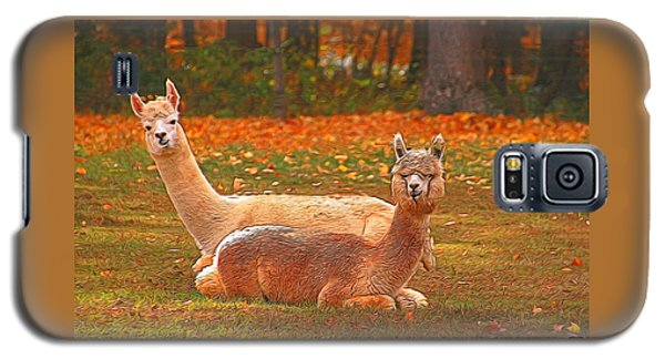 Teribus And Major Galaxy S5 Case by Allen Beatty