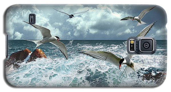 Terns In The Surf Galaxy S5 Case