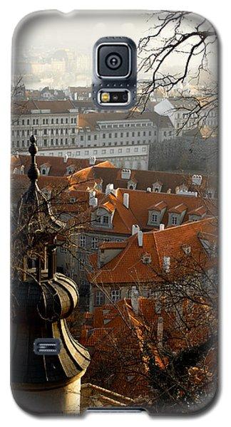 Terracotta Crowns Galaxy S5 Case