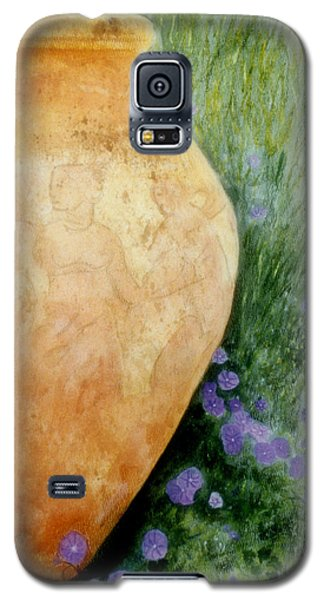 Galaxy S5 Case featuring the mixed media Terracotta Urn by Jan Amiss