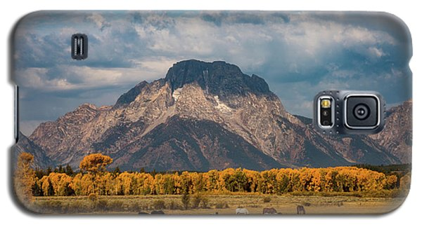 Teton Horse Ranch Galaxy S5 Case by Darren White