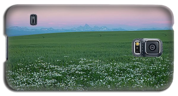 Tetons With Daisies Galaxy S5 Case