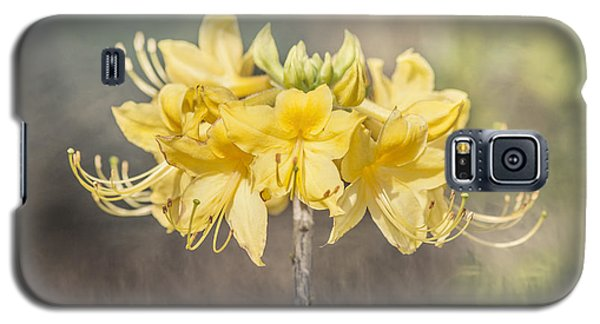 Texas Azalea -textured Galaxy S5 Case