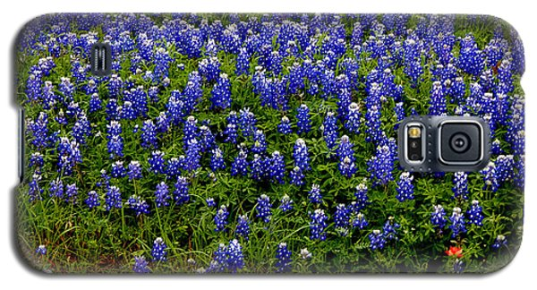 Galaxy S5 Case featuring the photograph Texas Bluebonnets #0484 by Barbara Tristan