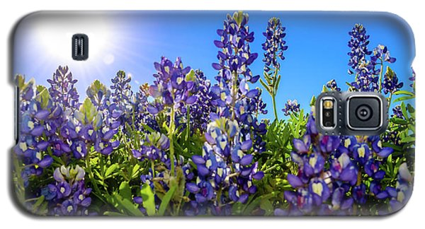 Texas Bluebonnets Backlit II Galaxy S5 Case