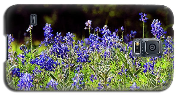 Texas Bluebonnets IIi Galaxy S5 Case