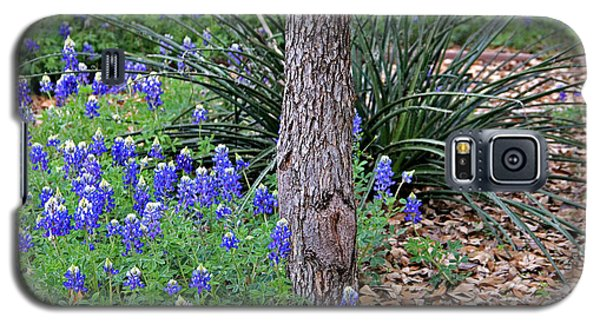 Texas Bluebonnets Galaxy S5 Case