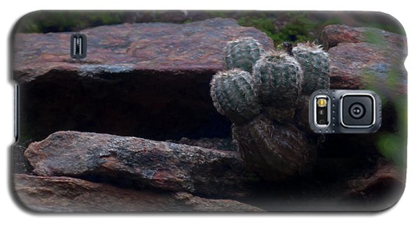 Texas Hill Country Cactus  Galaxy S5 Case by Travis Burgess