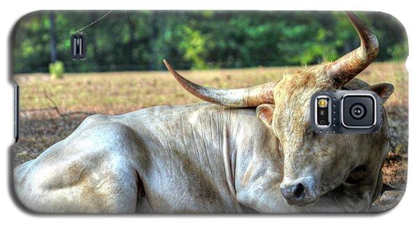 Texas Longhorn Gentle Giant Galaxy S5 Case