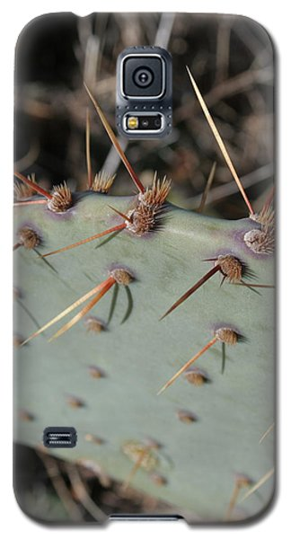 Galaxy S5 Case featuring the photograph Texas Spikes by Laddie Halupa