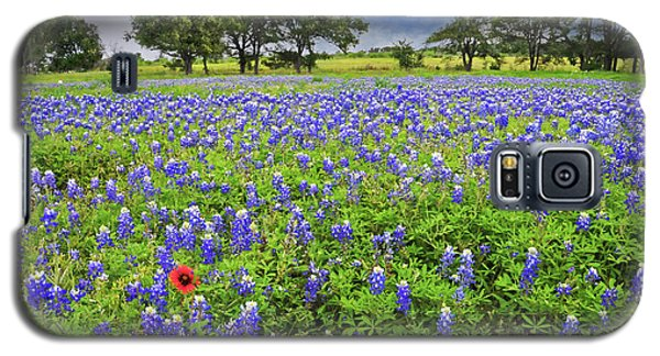 Texas Spring  Galaxy S5 Case