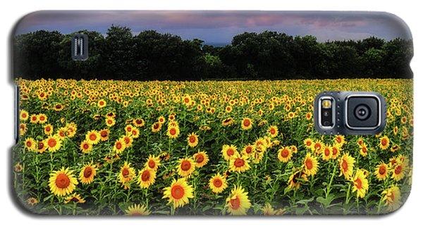 Texas Sunflowers Galaxy S5 Case