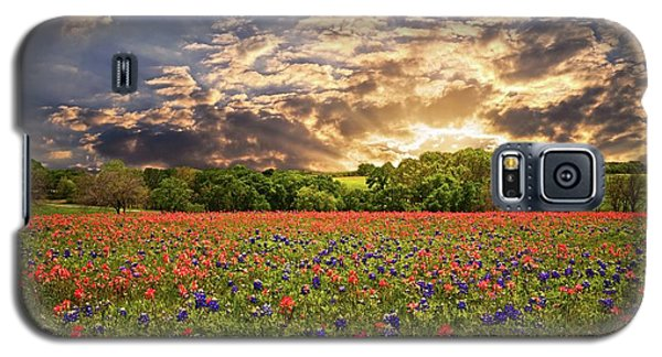 Texas Wildflowers Under Sunset Skies Galaxy S5 Case