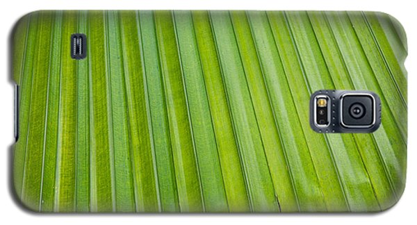 Texture 330 Galaxy S5 Case