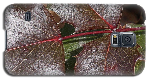 Galaxy S5 Case featuring the photograph Textured Leaves by Doris Potter