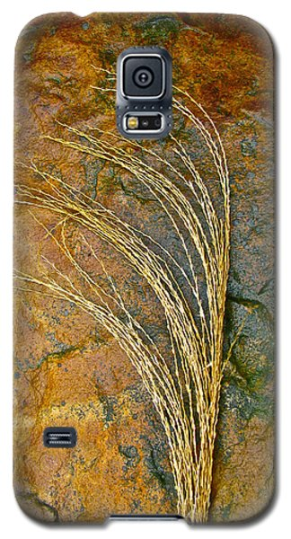 Textured Nature Galaxy S5 Case