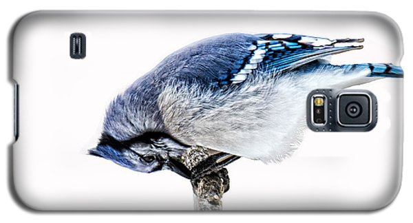 Galaxy S5 Case featuring the photograph Thank You For This Food by Skip Tribby