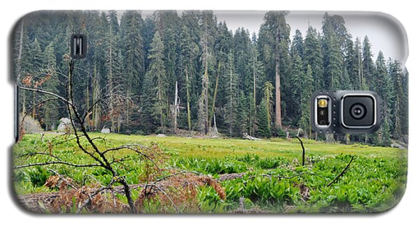 Galaxy S5 Case featuring the photograph Tharps Log Meadow by Kyle Hanson