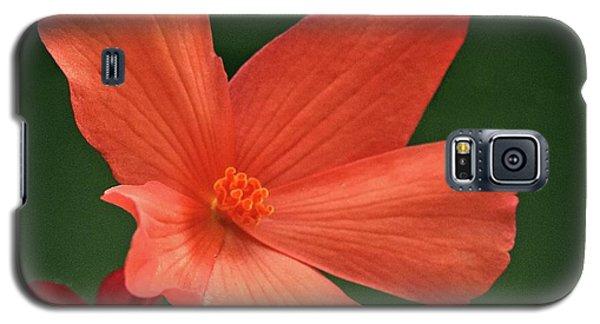 That Orange Flower Galaxy S5 Case