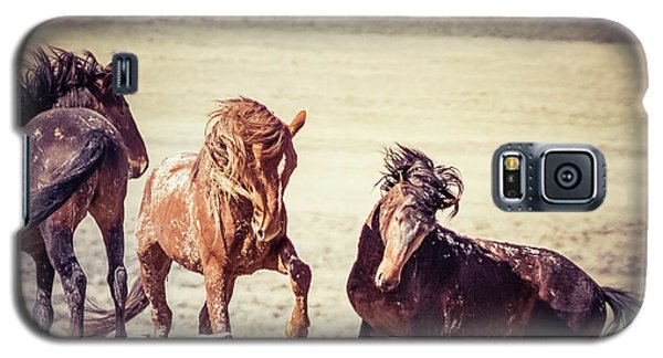 The 3 Amigos Galaxy S5 Case by Mary Hone