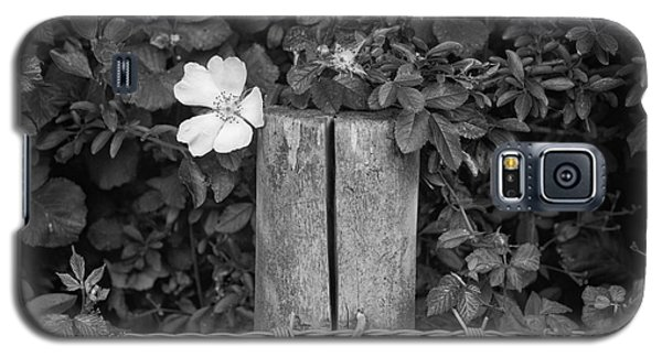 The Allotment Project - Dog Rose Galaxy S5 Case