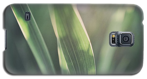 The Allotment Project - Sweetcorn Leaves Galaxy S5 Case