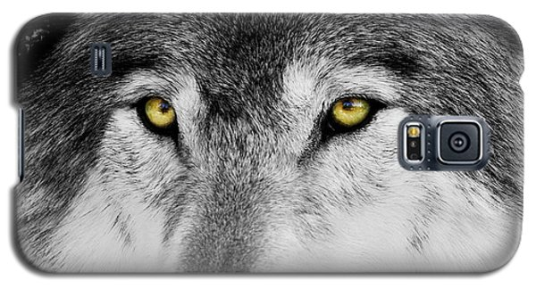 Galaxy S5 Case featuring the photograph The Alpha Portrait by Mircea Costina Photography