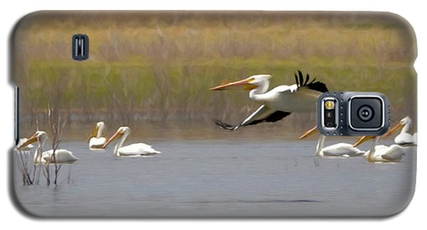 The American White Pelicans Galaxy S5 Case by Ernie Echols