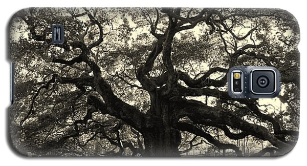 The Angel Oak Galaxy S5 Case
