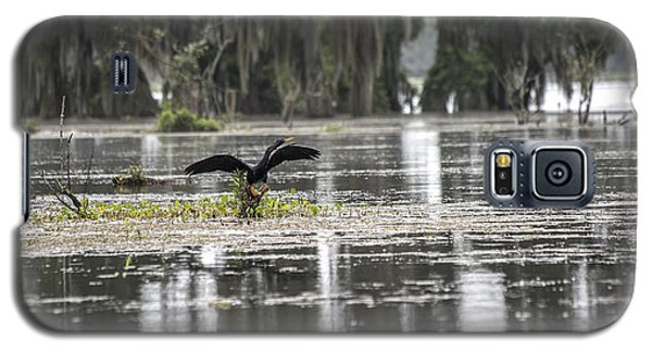 Loon Galaxy S5 Case - The Announcer  by Betsy Knapp