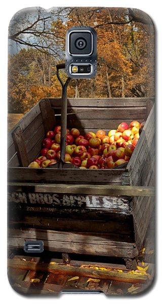 The Apple Bin Galaxy S5 Case