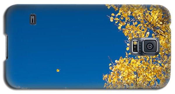 The Aspen Leaf Galaxy S5 Case