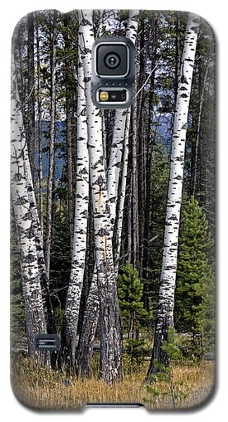 The Aspens Galaxy S5 Case by John Gilbert